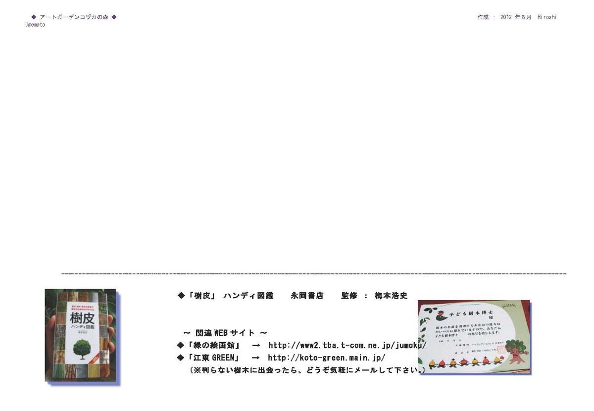調査・編集 梅本浩史